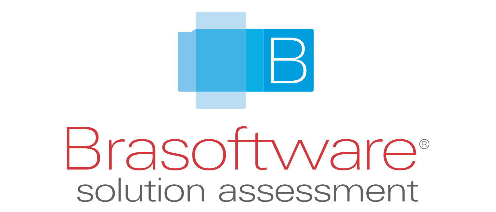 Logo Brasoftware Solution Assessment